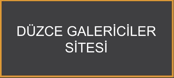 Düzce Galericiler Sitesi